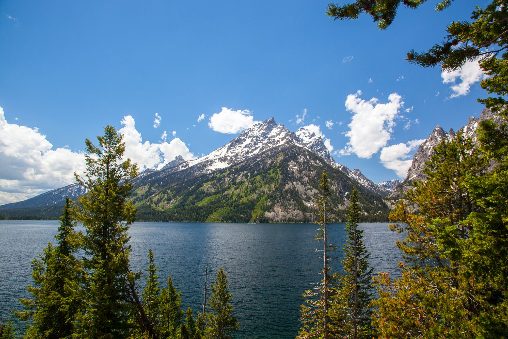 The Tetons from Jenny Lake